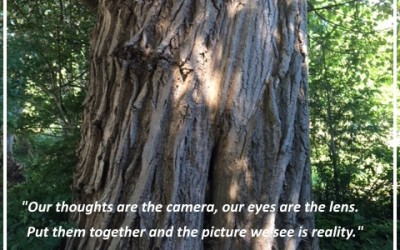 """Our thoughts are the camera, our eyes are the lens. Put…"